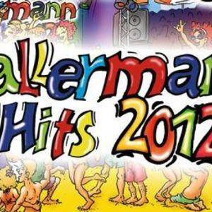Ballermann Hits 2012 - RTL2 live cut by mokilog