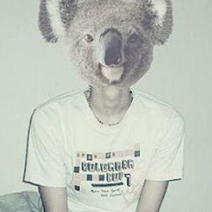Koala T's Marathon Mix