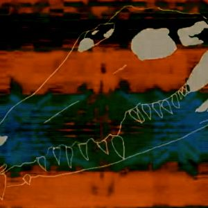 CROCODILE HZ RADIO #WARNING: CENTIPEDE (FROM WASTELANDS OF OUTER SPACE)