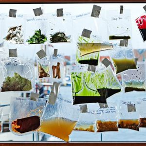 Imagining the future of food