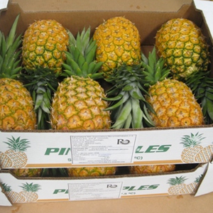 Boxed Pineapple by JELO