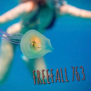 FreeFall 763