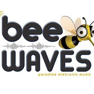 BeeWaves Radio Show - Brazil December 2010