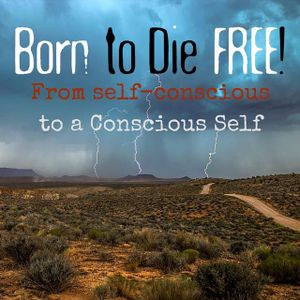 B2DF #14: From self-conscious to a Conscious Self