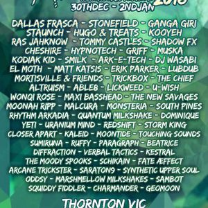 Fate Æffect - Tanglewood NYE Music & Arts Festival 2016 DJ Set