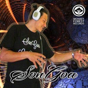 SonGoa @ Goalicious II