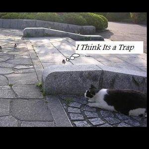 TG- I Think It's A Trap 2