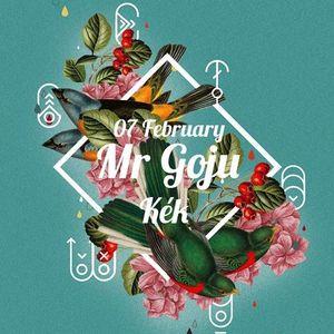 Mr Goju - Live At Gazette 07/02/2014