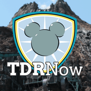 Tokyo Disney Resort A Year in Review 2016 – Episode 65