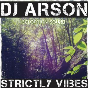 Dub Brigade Episode 10 - Dj Arson - Strictly Vibes