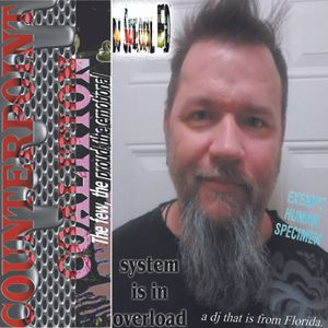 """The Counterpoint Coalition - """"the system is in overload"""" - fixxmixx"""