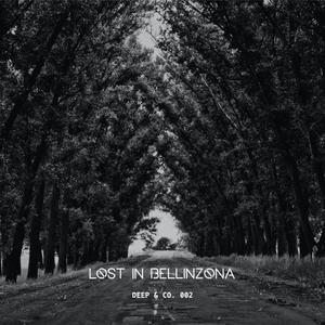 Deep & Company Podcast 002 // Lost in Bellinzona