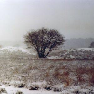 Cloudscape #58: Winter Solstice 2015