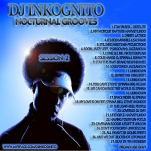 DJ INKOGNITO NOCTURNAL GROOVES 2
