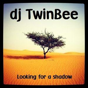 Dj TwinBee - Looking for a shadow