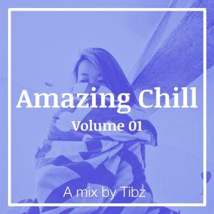 Tibz x Amazing Chill - Volume 01