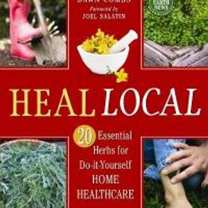 Dawn Combs on Healing Local