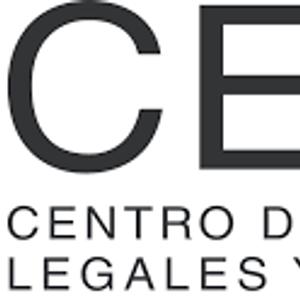 21 - 03 - Gabriela Kletzel - Directora del equipo de trabajo internacional CELS - AUDIENCIA EN CIDH