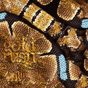 Daevid - Gold Rush