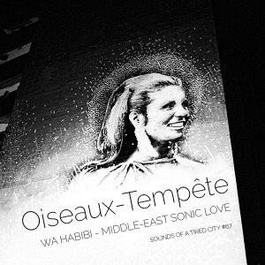 Sounds Of A Tired City #67: Oiseaux-Tempête