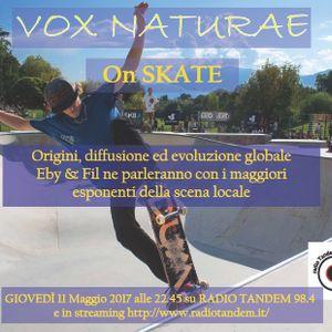 Lo Skate, la sua storia, i suoi protagonisti a Bolzano (11 Maggio 2017)