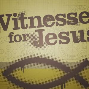 Re-Telecast - Interviews From the Witnesses Now for Jesus Convention