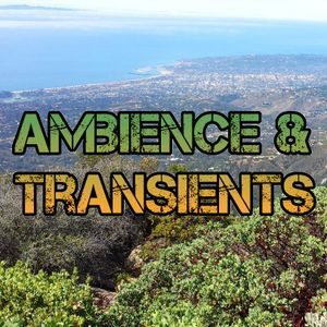 Ambience & Transients 039 - KCSB (07-13-15)
