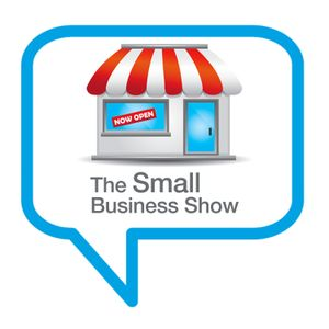 Politics and Your Small Business – Should you mix them? – Small Business Show episode 98