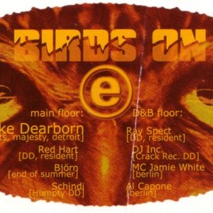 "Mike Dearborn at ""Birds On E"" @ Flugzeugwerft (Dresden - Germany) - 17 May 1997"