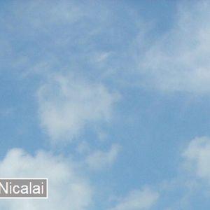 ElectRo Exclusives - No. 007: Nicalai
