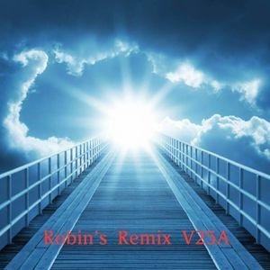 Robin's Remix V25A