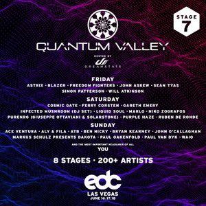 Purple Haze - Live @ Quantum Valley EDC Las Vegas (USA) 2017.06.17.