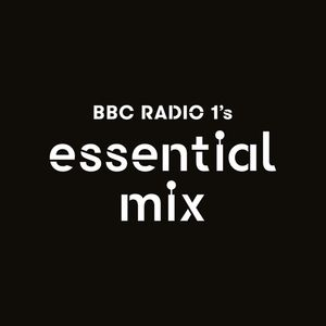 A Guy Called Gerald - BBC Radio 1's Essential Mix 1995-10-07