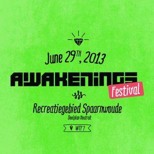 Pink Noise (Fernanda Martins+Candy Cox) @ Awakenings Festival 2013 at Spaarnwoude 29-06-2013
