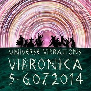 Vibronica - 2014