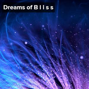 Dreams of B l i s s