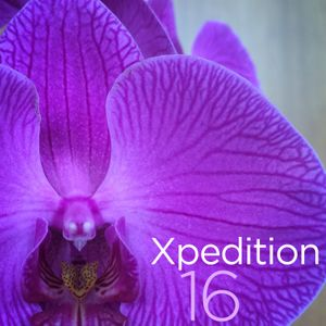 Xpedition Mix 16