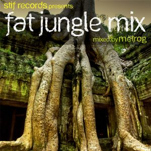 Fat jungle mix - (hip hop dubstep techno electro dnb) mixed by metrog - may 2011 - DOWNLOAD