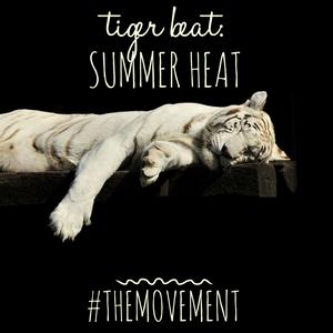 Tiger Beat : Summer Heat
