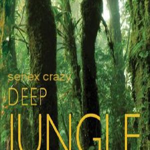 Deep Jungle (chill out mix)