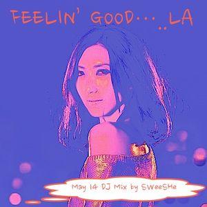 Feelin' Good....LA(May 14 DJ Mix by Sweeshe)