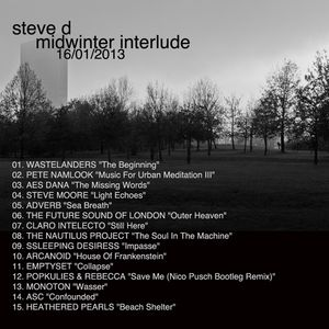 Steve D - Midwinter Interlude (16/01/2013)