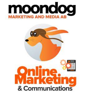 Telling Social Media Stories in B2B