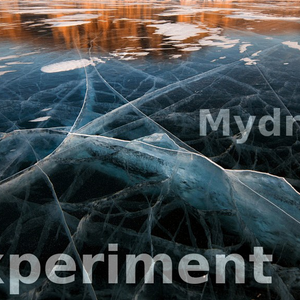 The Mydriasis Experiment #12