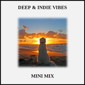 Mini Mix (House & Dance: Deep and Indie Vibes)