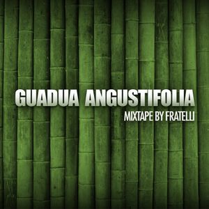 Guadua Angustifolia Tape (Made for Switch,StuBru)