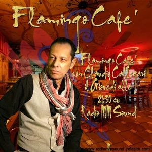 Flamingo Cafè - Music and Voice by Claudio Callegari Quinta Puntata