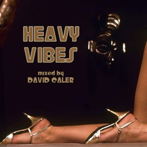 David Caler - Heavy Vibes (Funky Town 31)