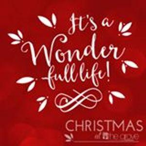 Wonder-Full Life:  Week 1, December 6, 2015