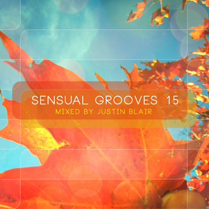 Sensual Grooves v15 - mixed by Justin Blair @ W Hotel Barcelona 07.11.2012